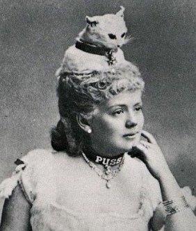Puss Hat