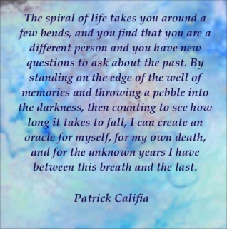 Patrick Califia quote writing erotic fiction