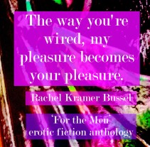 for-the-men-fiction-erotic-rachel-kramer-bussel