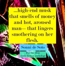 sonni-de-soto-for-the-men-erotic-fiction