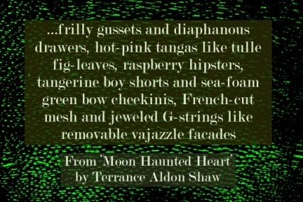 Terrance Aldon Shaw Moon-Haunted heart quote 3
