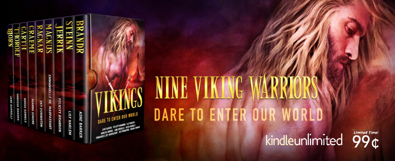 vikings- banner dare to enter our world